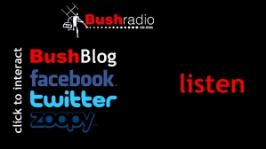 www.bushradio.co.za