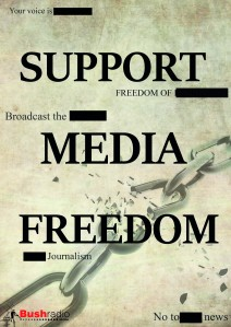 Media Freedom1