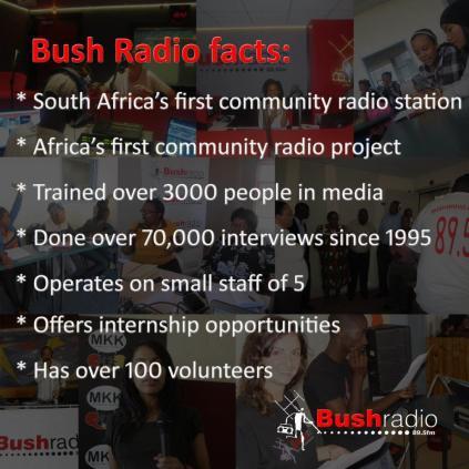 bush facts small