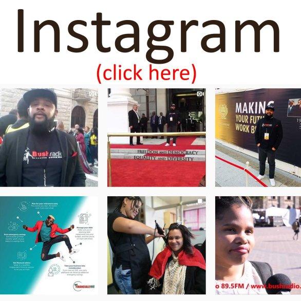 instagram link bush.jpg